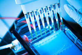 The above-discussed ones are considered to be some of the most important things that you should know about the sequencing Sanger.